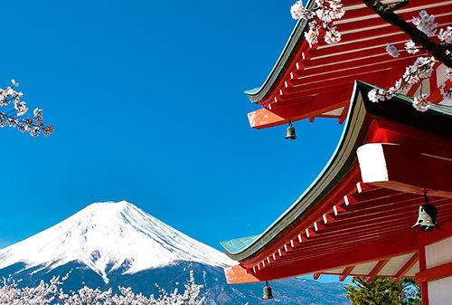 Siti eCommerce Torino - Viaggio in Giappone