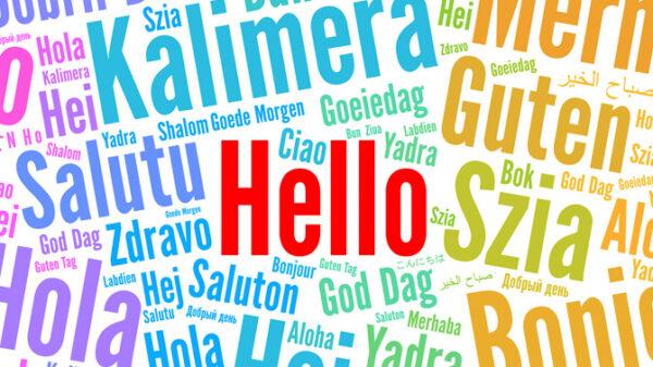 Creazione Siti Web Multilingua Torino
