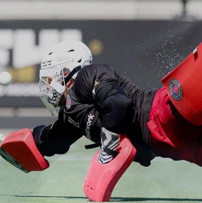 eCommerce Hockey